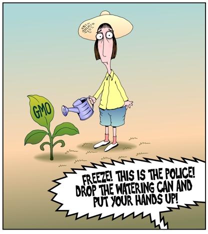 Gardening Cartoon Gmo Gardener Geneticaly Modified Organism Gmo Ban Draconian Environmental Laws Watering Can Criminals Cartoon By John Pritchett